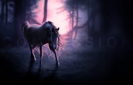 веселый конь фото