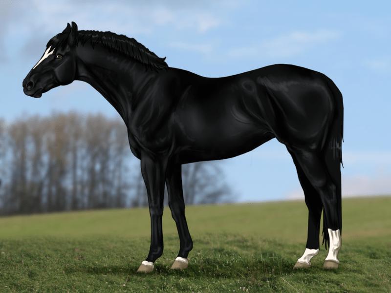 Ролевая игра дикие лошади форумная ролевая игра игры престолов
