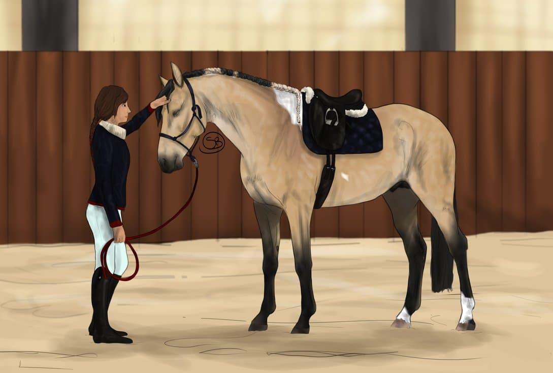 Ролевая игра про лошадей и конный спорт тимбилдинг «выборы» ролевая игра от 40 человек