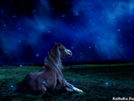 Картины и фото с лошадьми