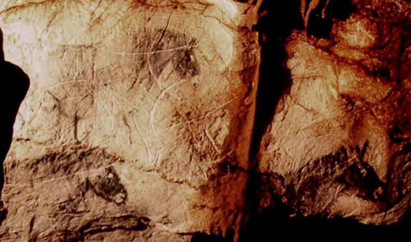 Гравюры и картины лошадей. Пещера Коске, Франция.
