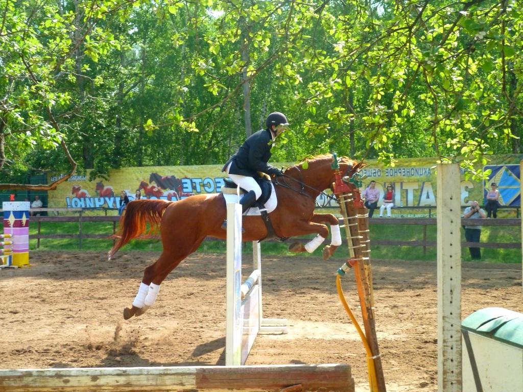 Рыжая масть лошадей: фото, описание