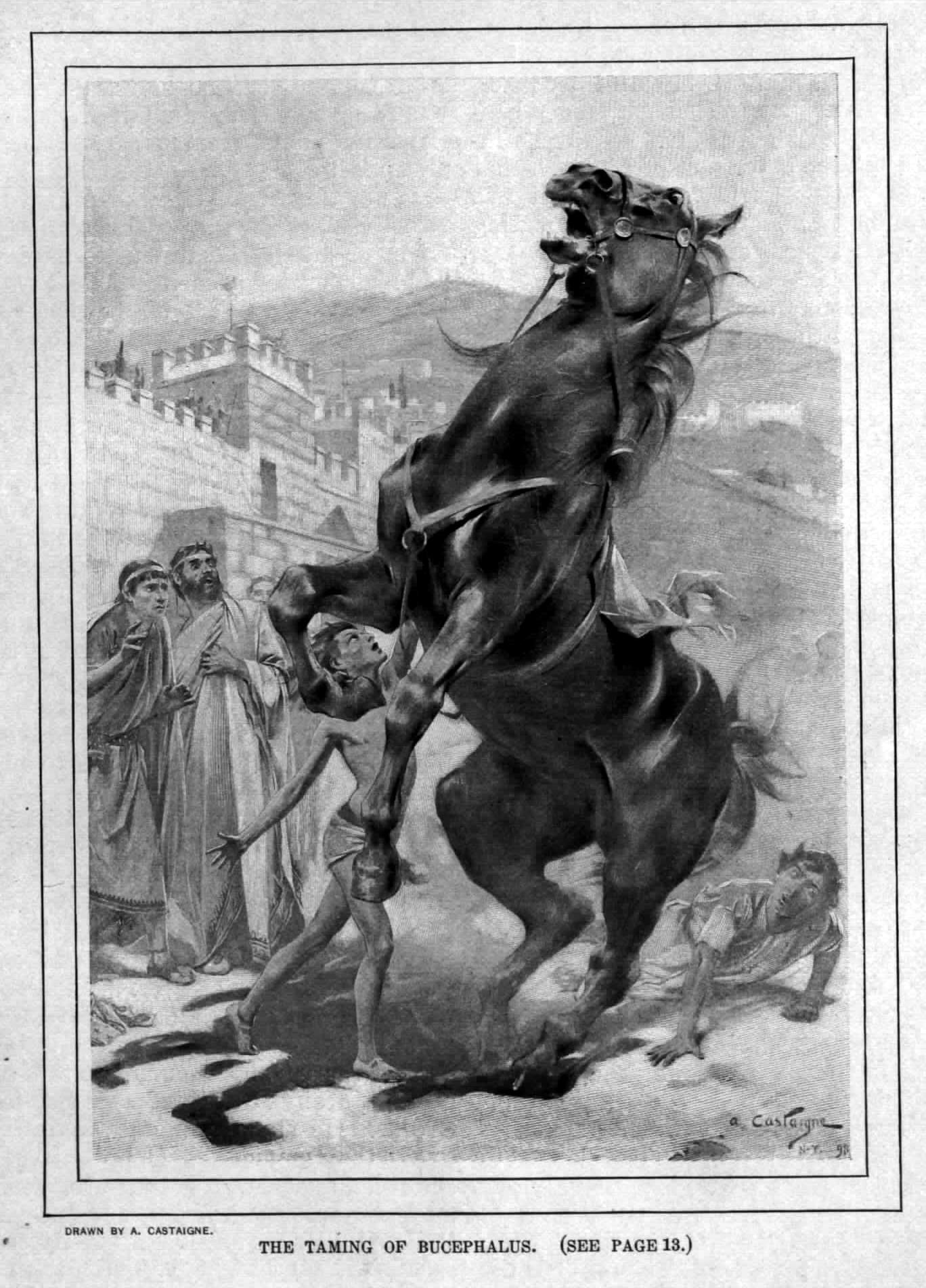 Лошадь Александра Македонского по кличке Буцефал.