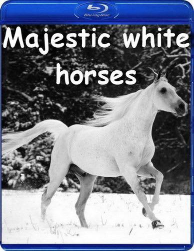 Фильм про лошадей королевские белые