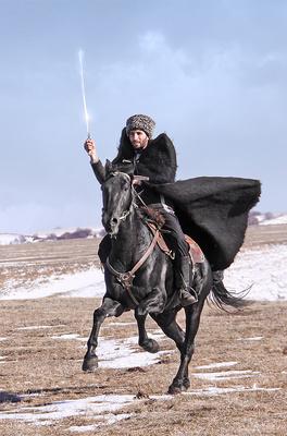 породы лошади смотреть карачаевской фото