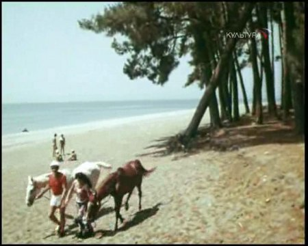 Фильм про лошадей дрессировщики фильм
