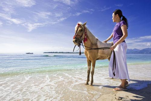 Фото пони породы Бали соловой масти