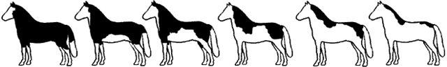Рисунки разных вариантов типа оверо сплешед уайт
