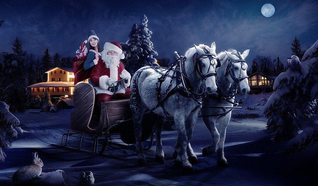 Новогоднее фото упряжки из двух белых лошадей, Деда Мороза и Снегурочки