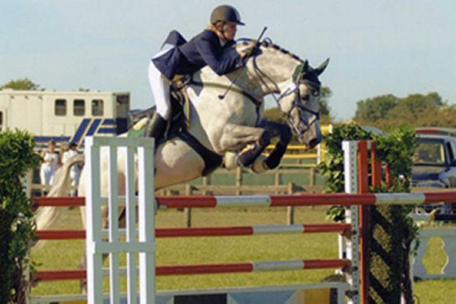 Фото лошади породы солерно серой масти