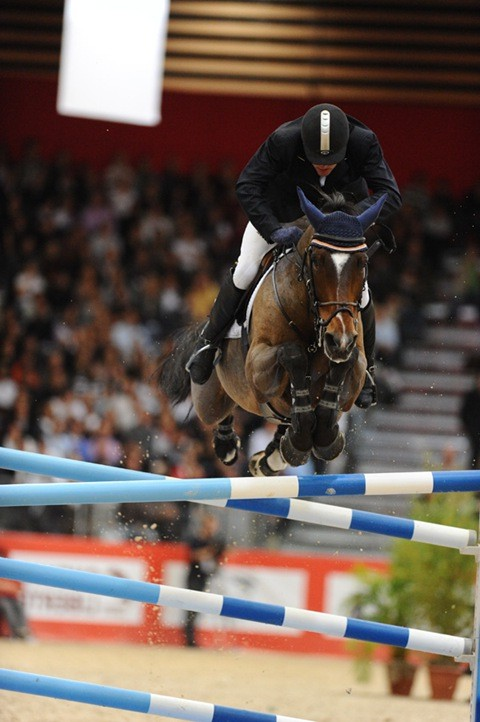 Фото лошади по кличке Оки-Доки