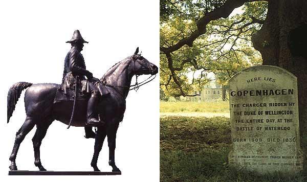 Фото памятника и надгробной плиты лошади по кличке Копенгаген