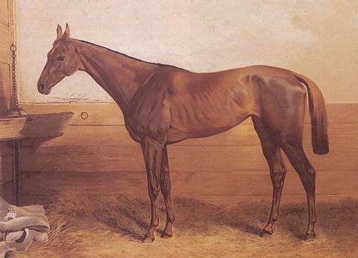 Рисунок легендарной лошади Кинчем