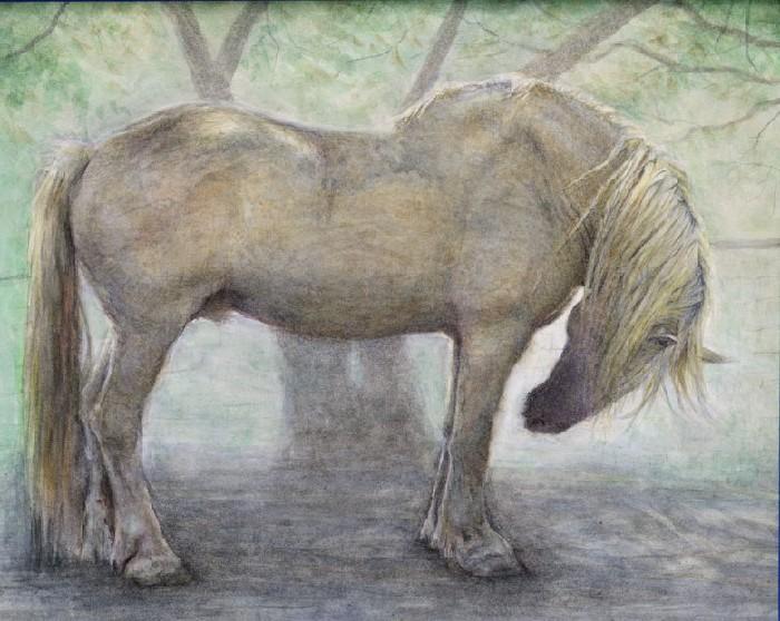 Рисунок американской кремовой лошади