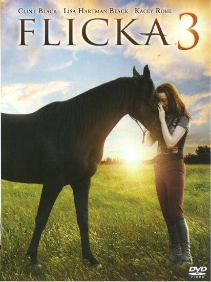 Фильм про лошадей флика гордость
