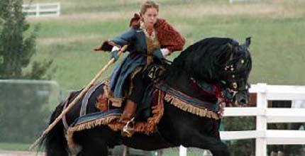 Испано-арабская лошадь