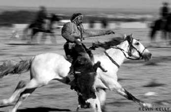 Казахская лошадь
