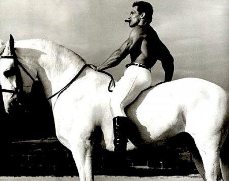 Арнольд Шварценеггер на белом коне