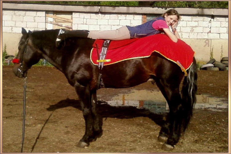 Оргазм у лошадей