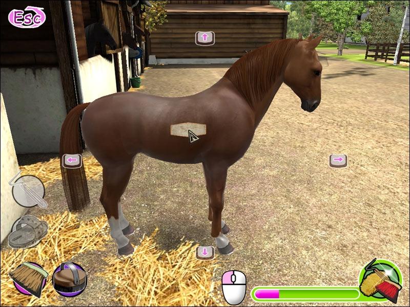 Игры для девочек лошади скачать на компьютер