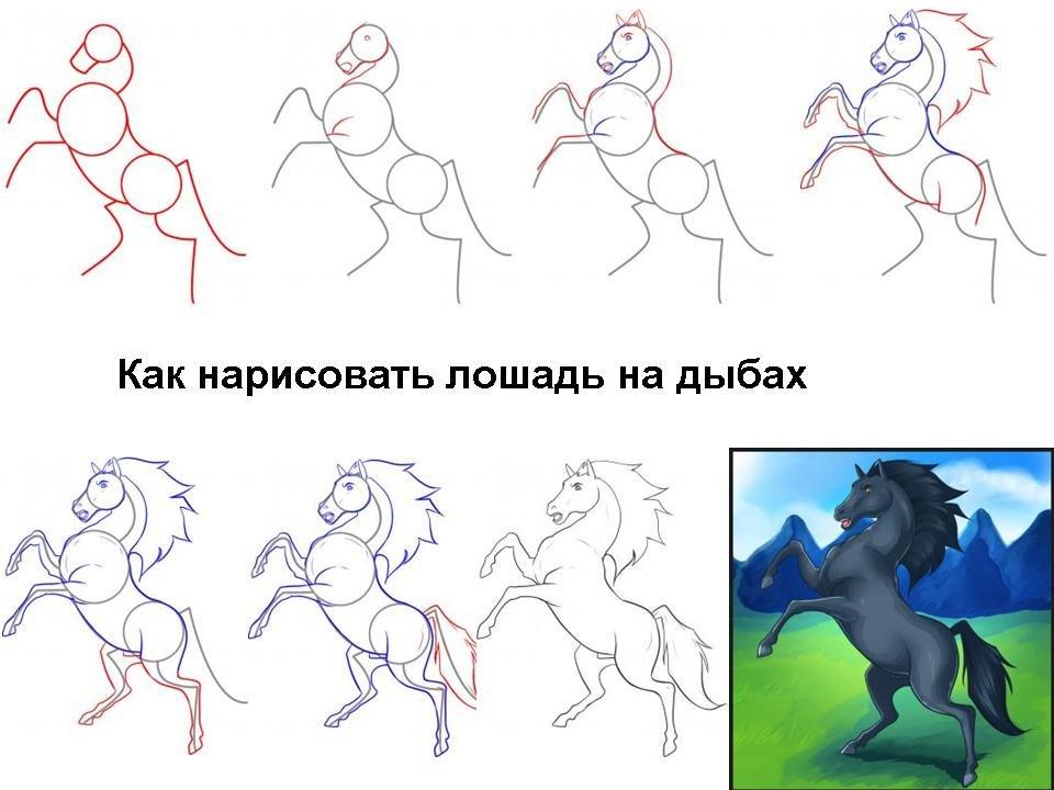 Рисунки про лошадей поэтапному