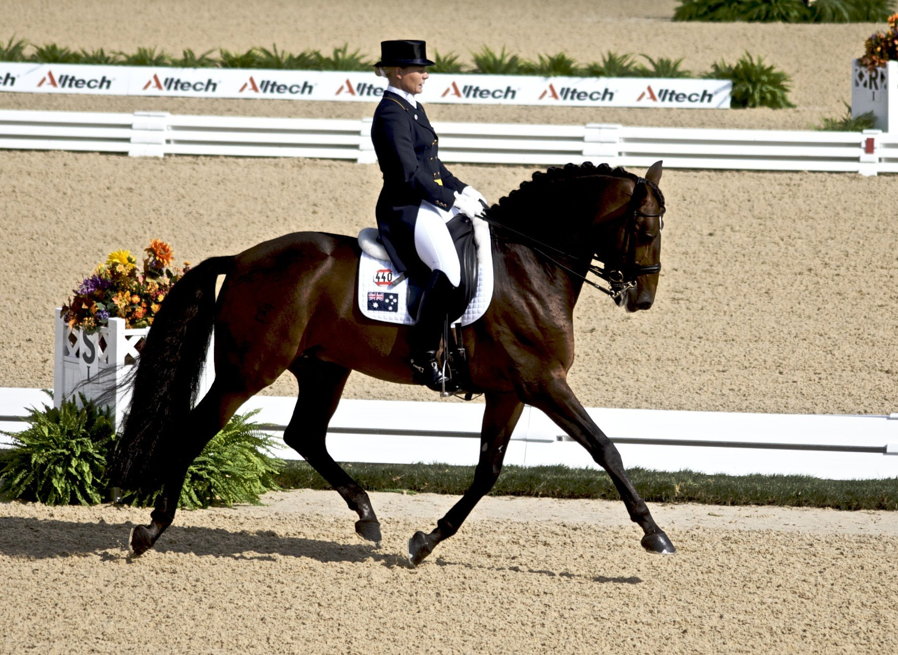 http://kohuku.ru/uploads/posts/2014-01/1390392403_weg_2010_-_dressage_qualifying.jpg