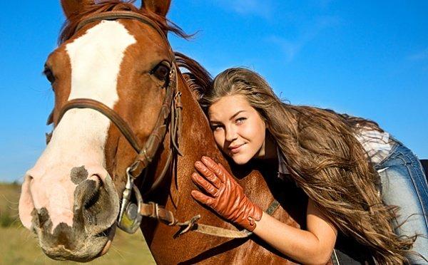смотреть сколько времени занимает работа с одной лошадью этой цели служит