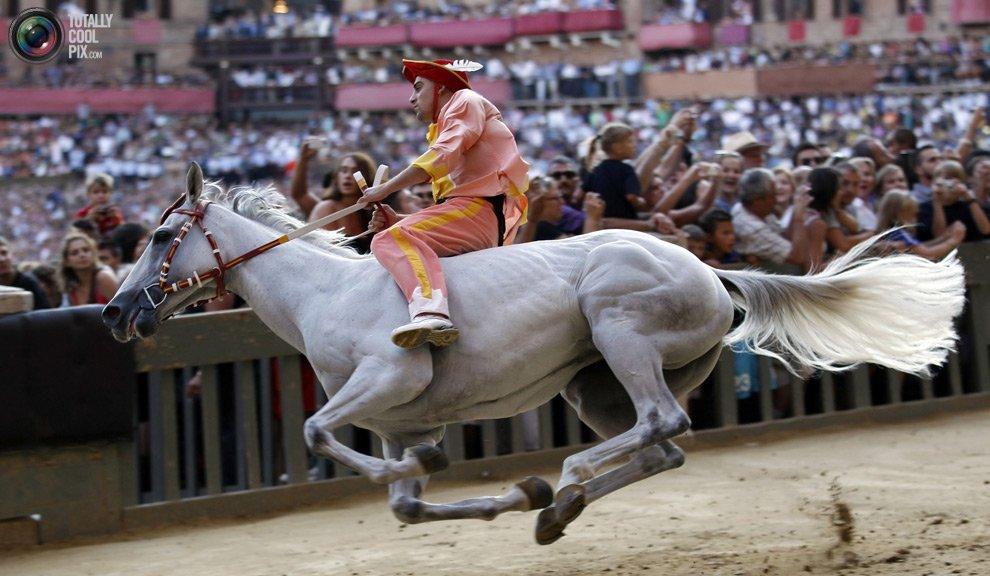 Смотреть игры про лошадей видео