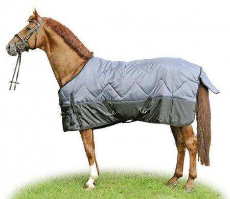 Лошадь с попоной