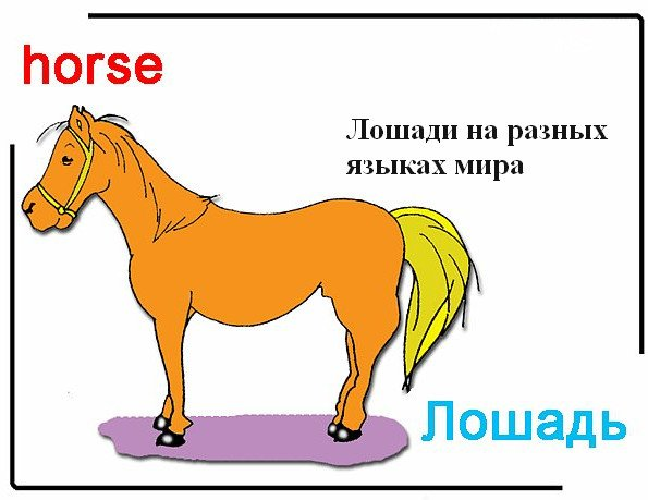 Сергей морозов щелково